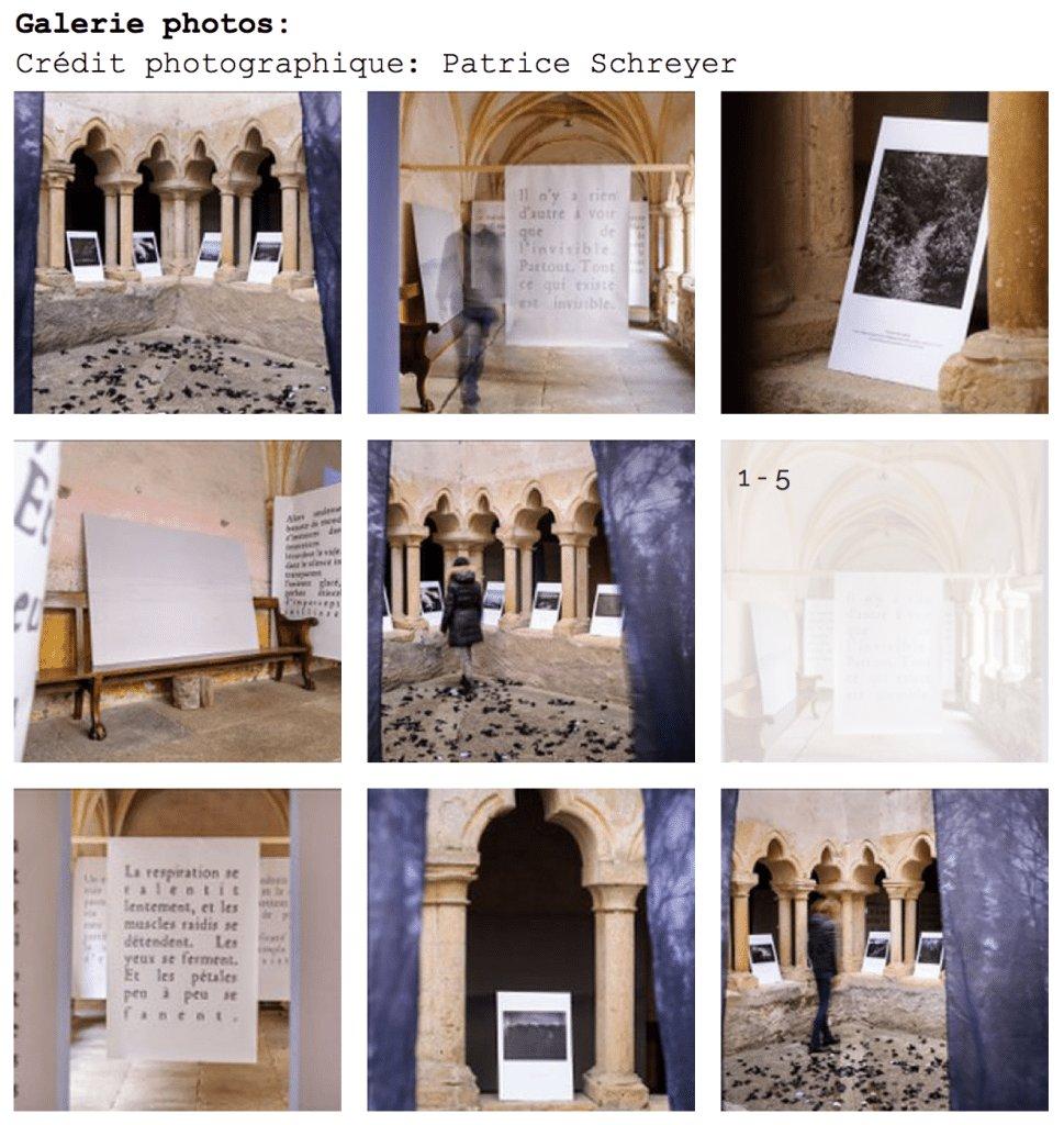 Galerie-photo-exposition-Patrice-Schreyer
